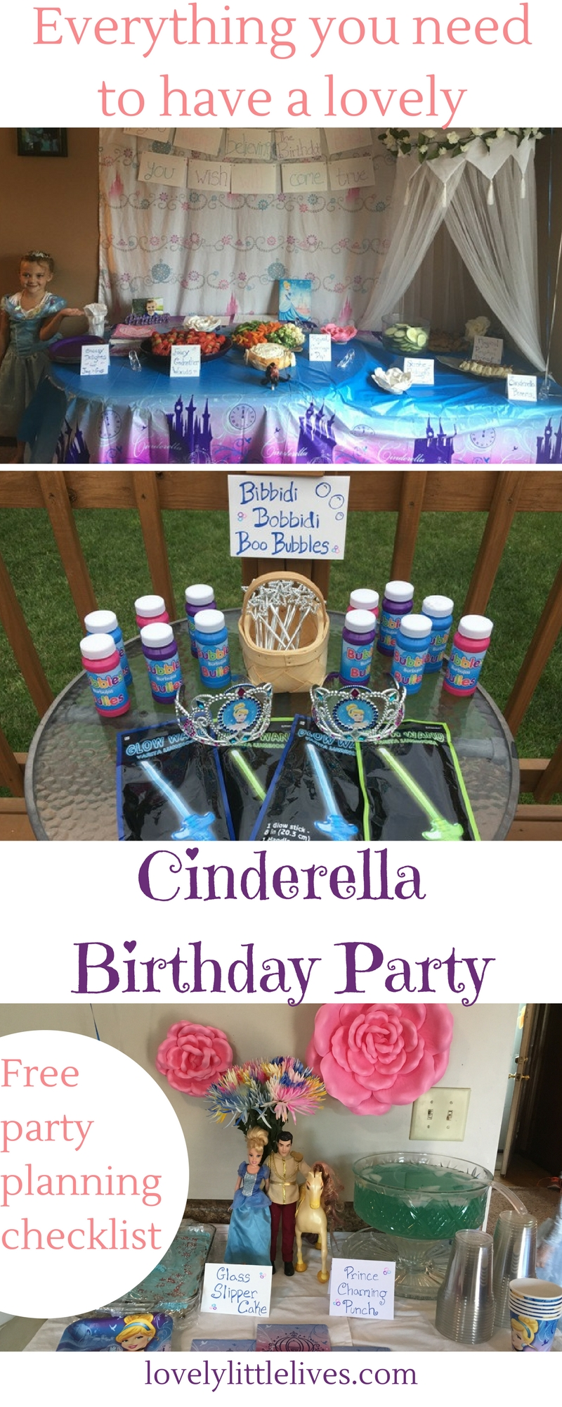 Everything you need to have a lovely Cinderella party.
